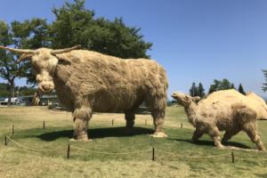 """""""Humans are part of nature"""": Explore Echigo Tsumari Art Triennale 2018"""