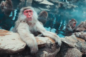 Onsen etiquette: How to do what not to do