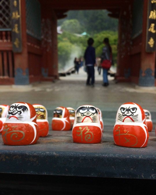 temple gates lined with daruma dolls