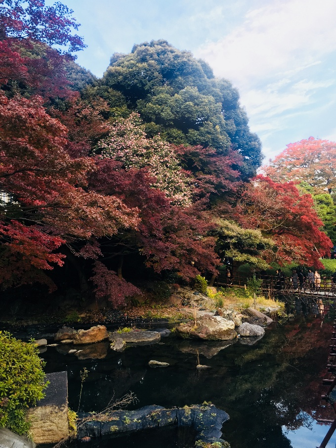 A picture of the gardens with a lake and autumn trees on its banks
