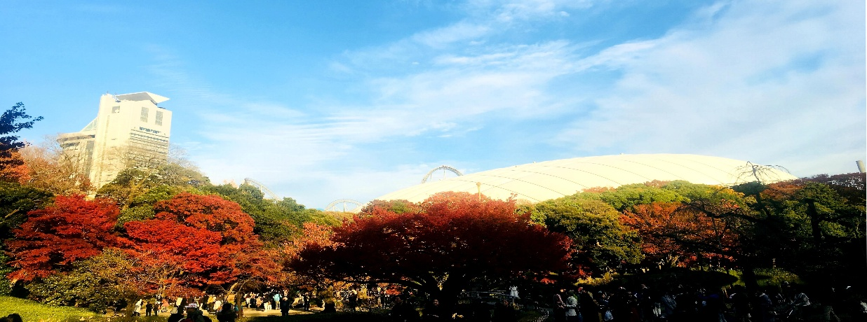 A panoramic view of the gardens of the trees against a blue sky