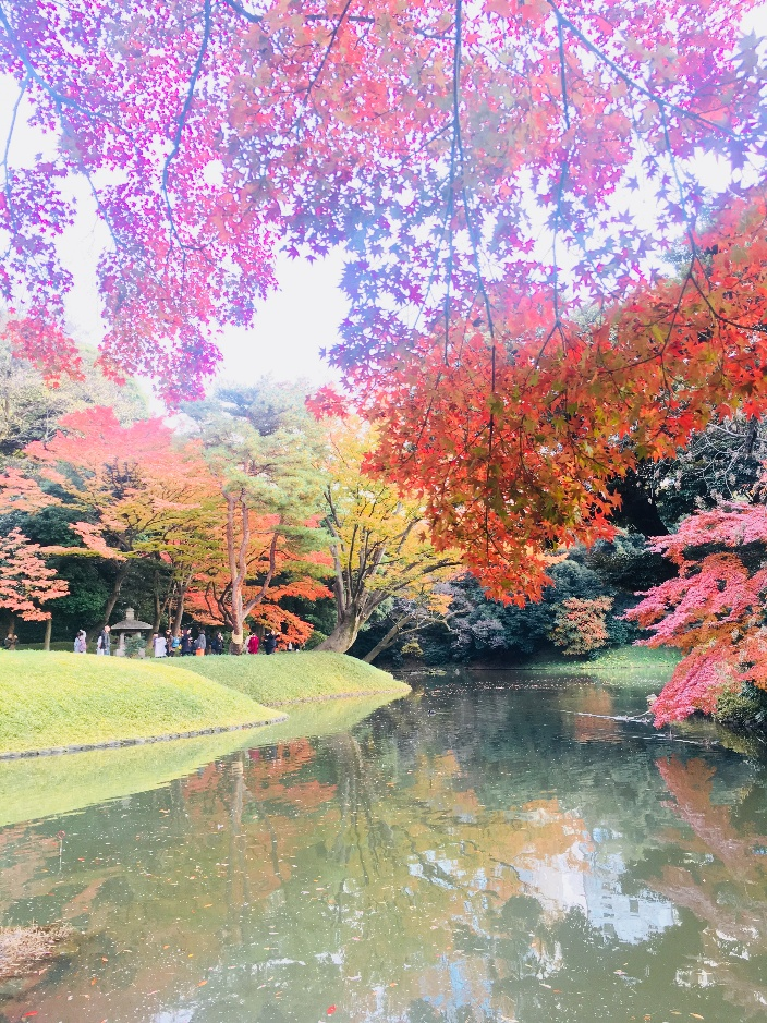 A photograph of a lake framed by red autumn leaves