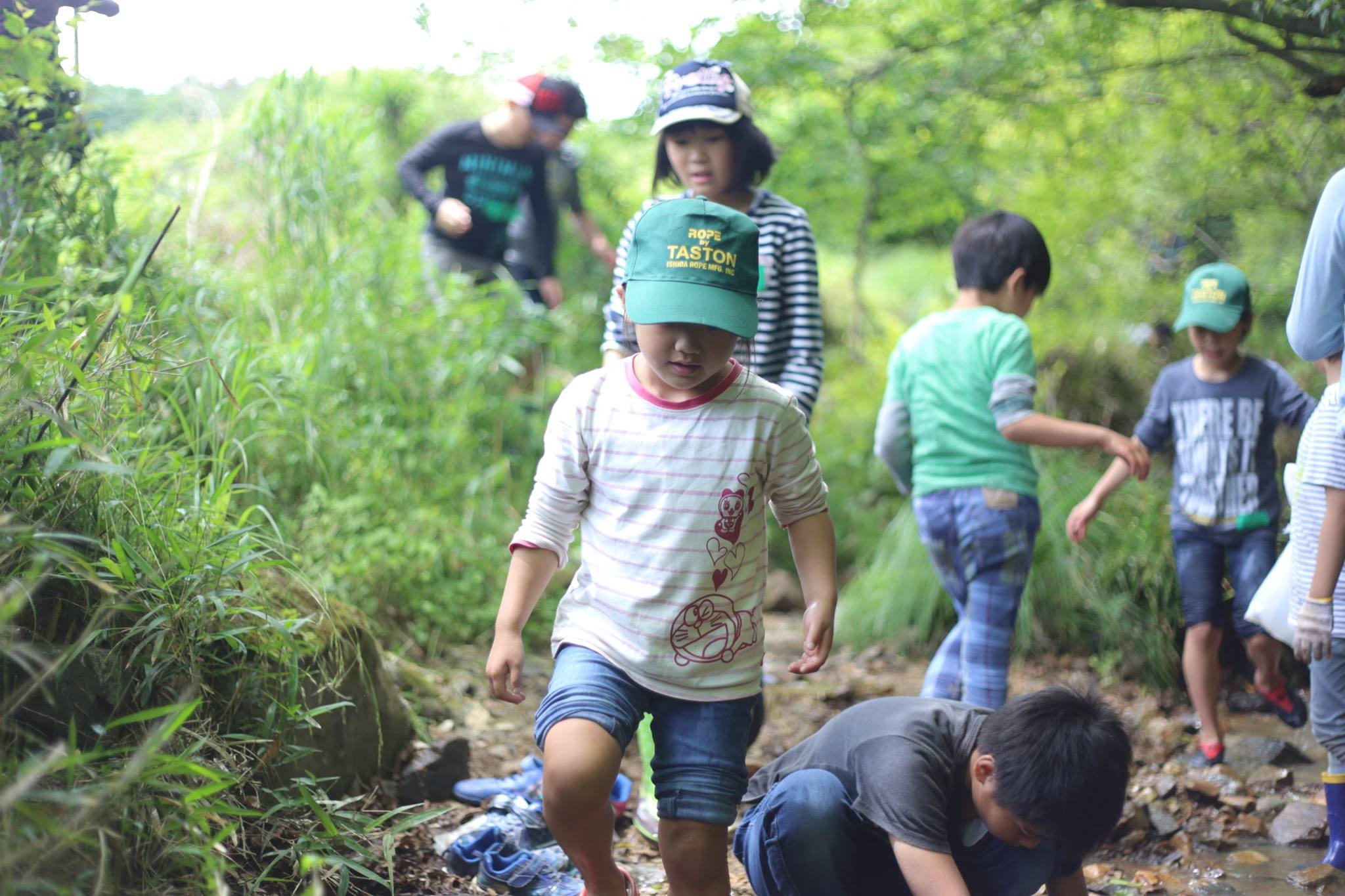 photograph of a group of children playing around in a wooded area