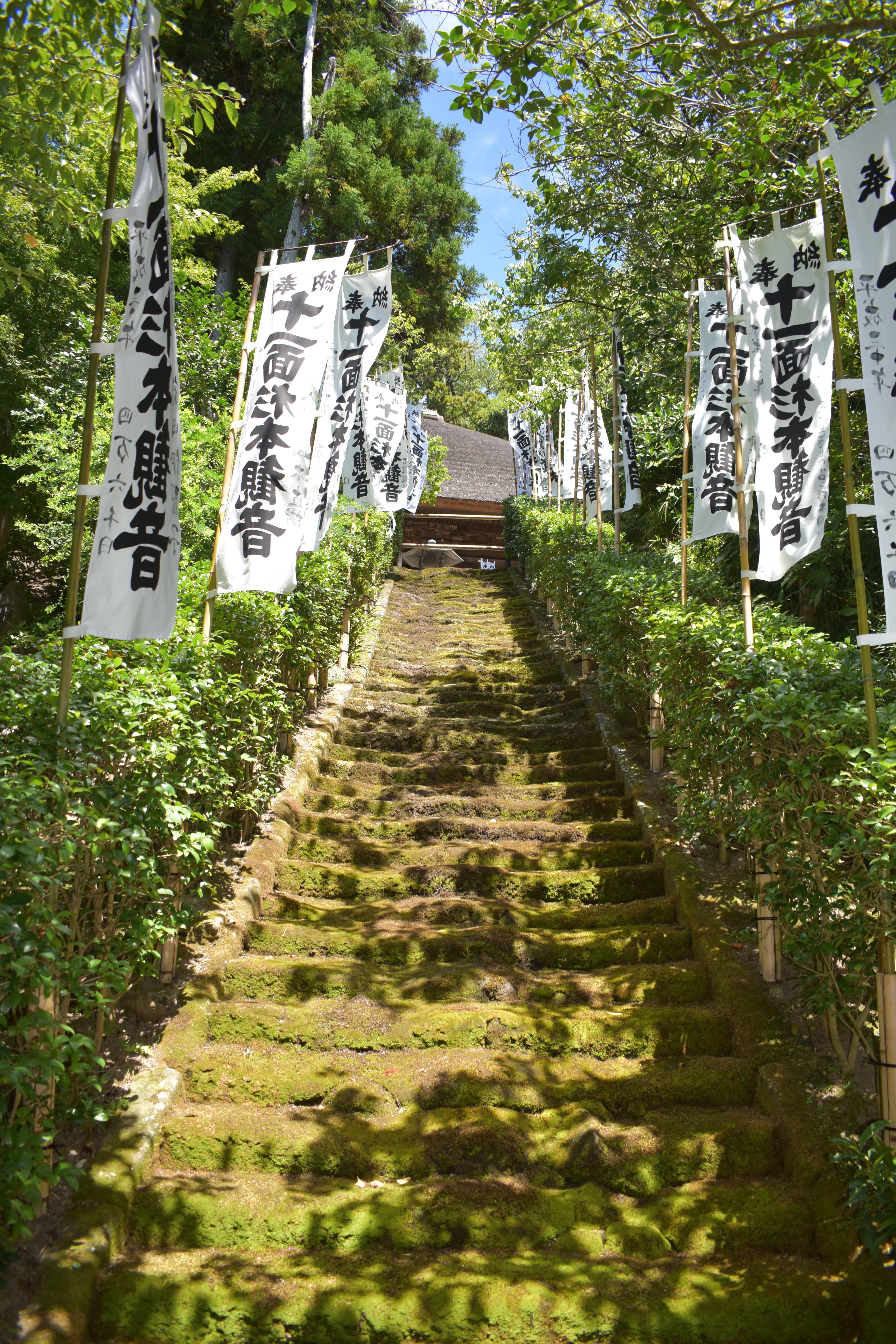A picture of the steps to the Sugimotodera temple
