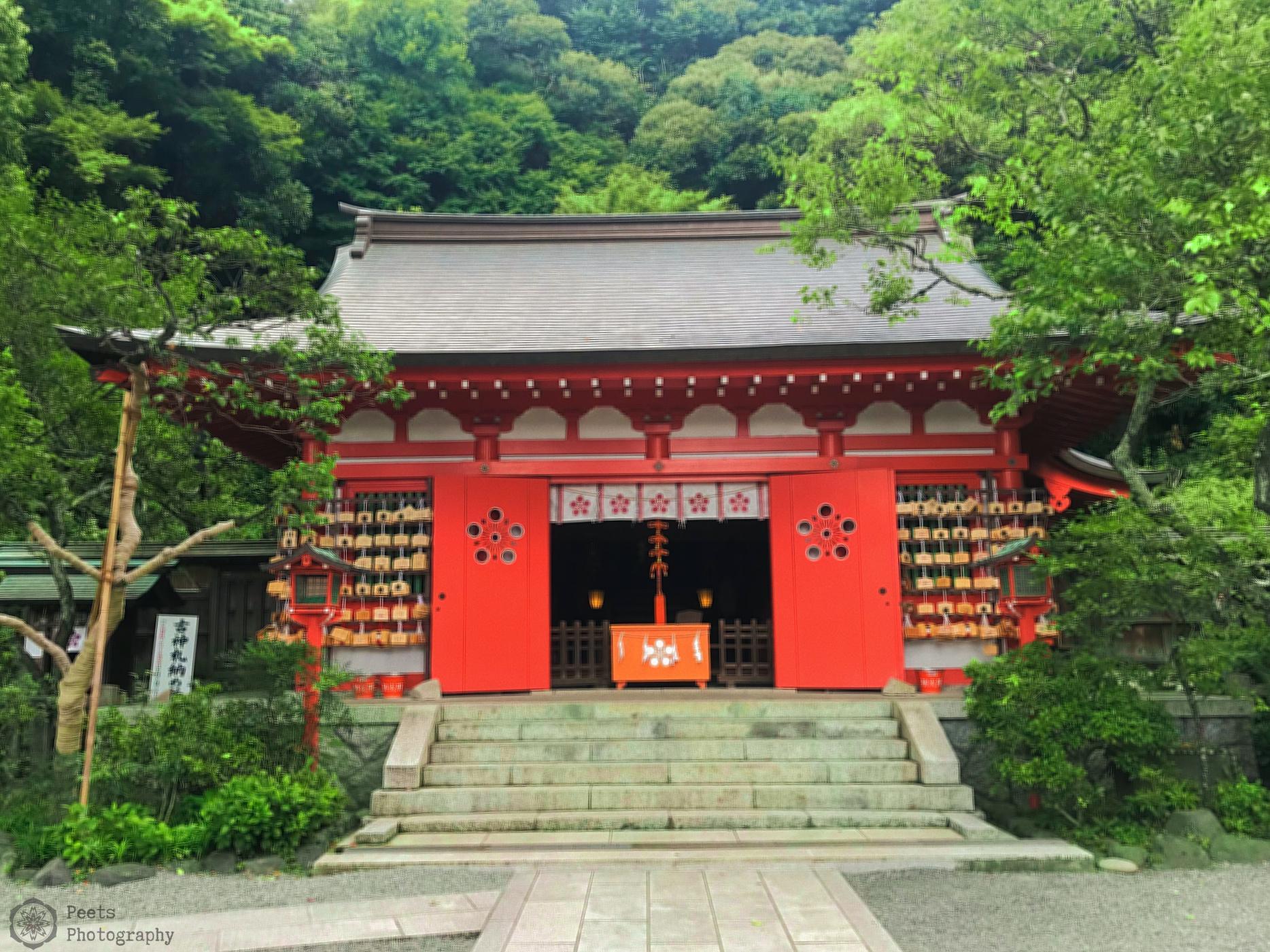 Picture of the Egara Tenjinsha shrine amidst trees