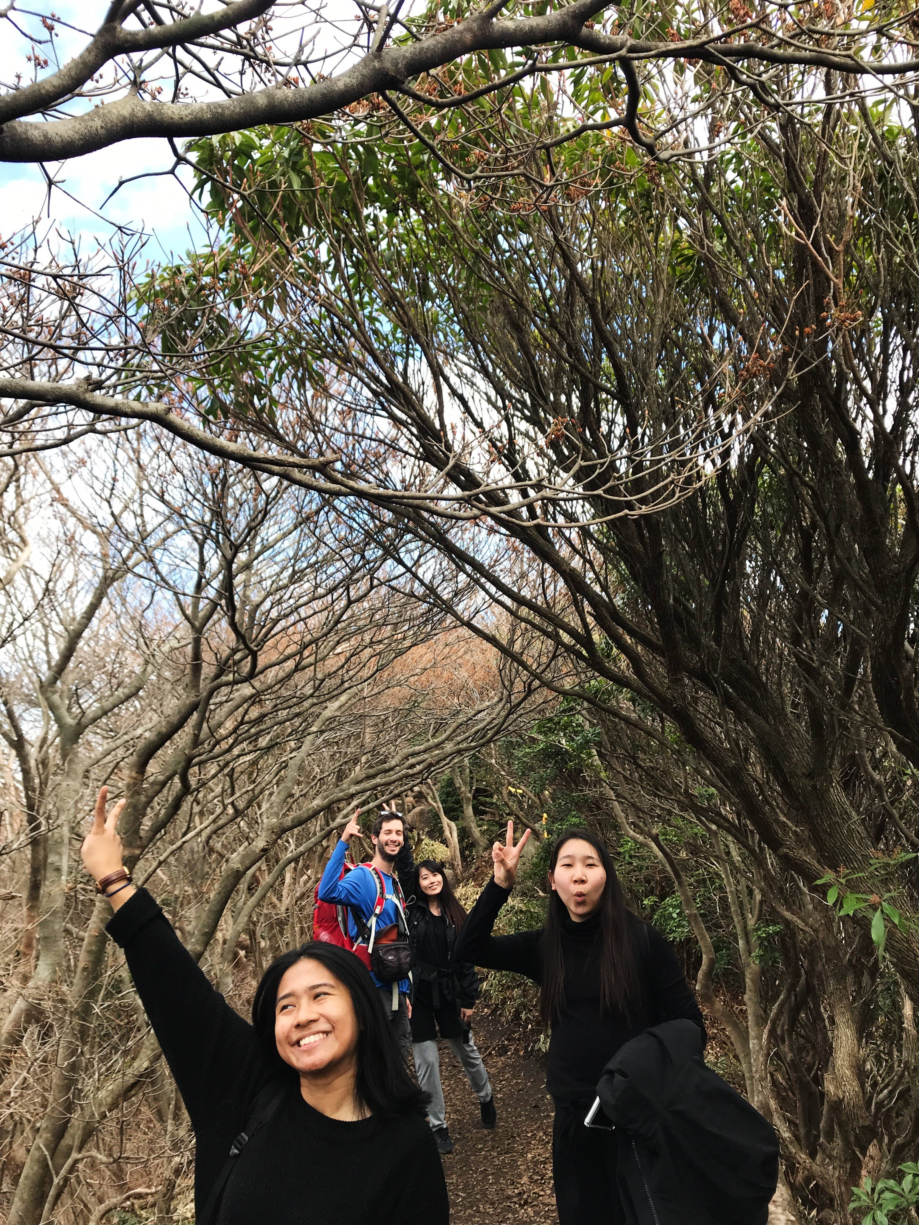 A picture of a group of people hiking up the mountains
