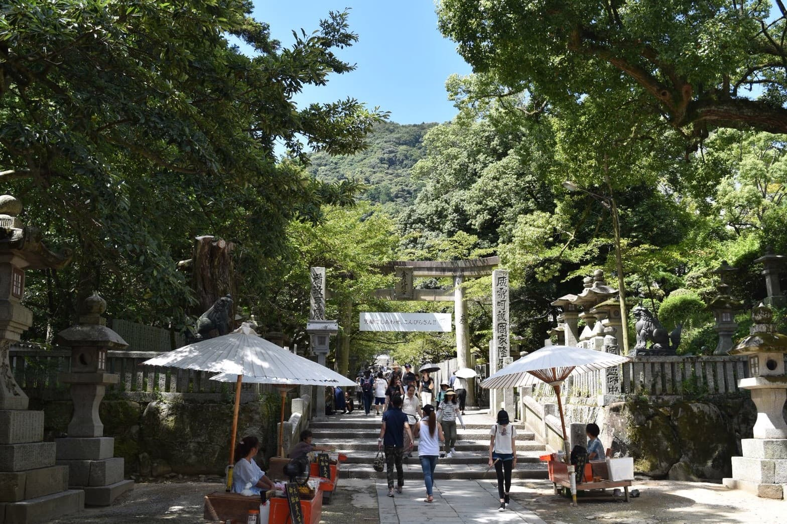 Picture of the gate to the shrine in a pathway of trees