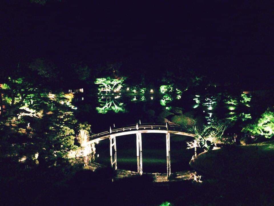 A picture of a bridge amidst the Ritsurin garden