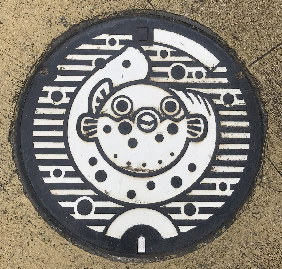 Picture of the manhole cover with the drawing of a fugu fish