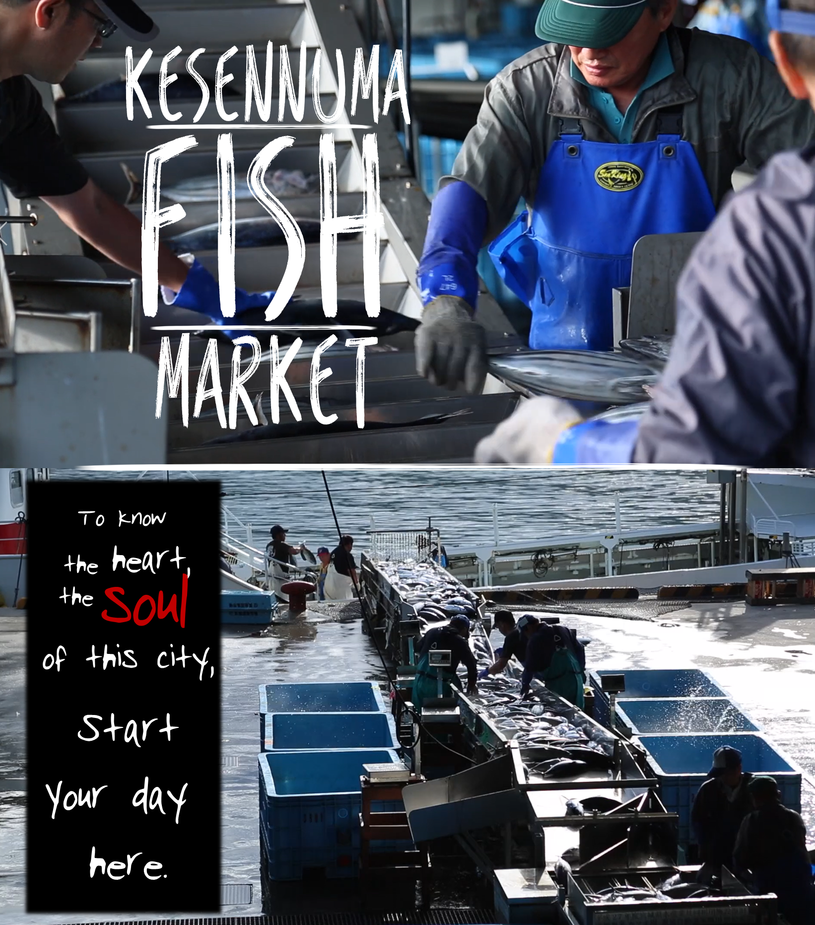 A close-up picture of a shopkeeper handling his wares at the fish market