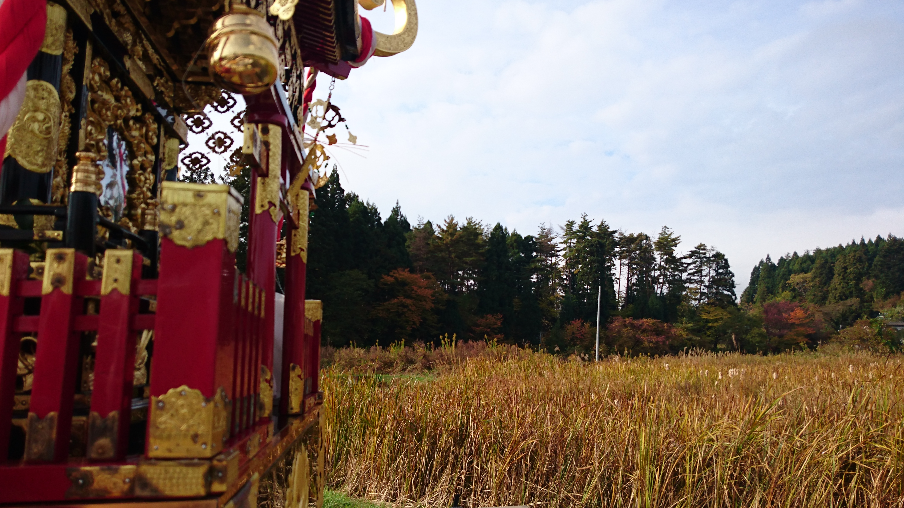 Picture of the a part of the portable shrine overlooking a field of paddy