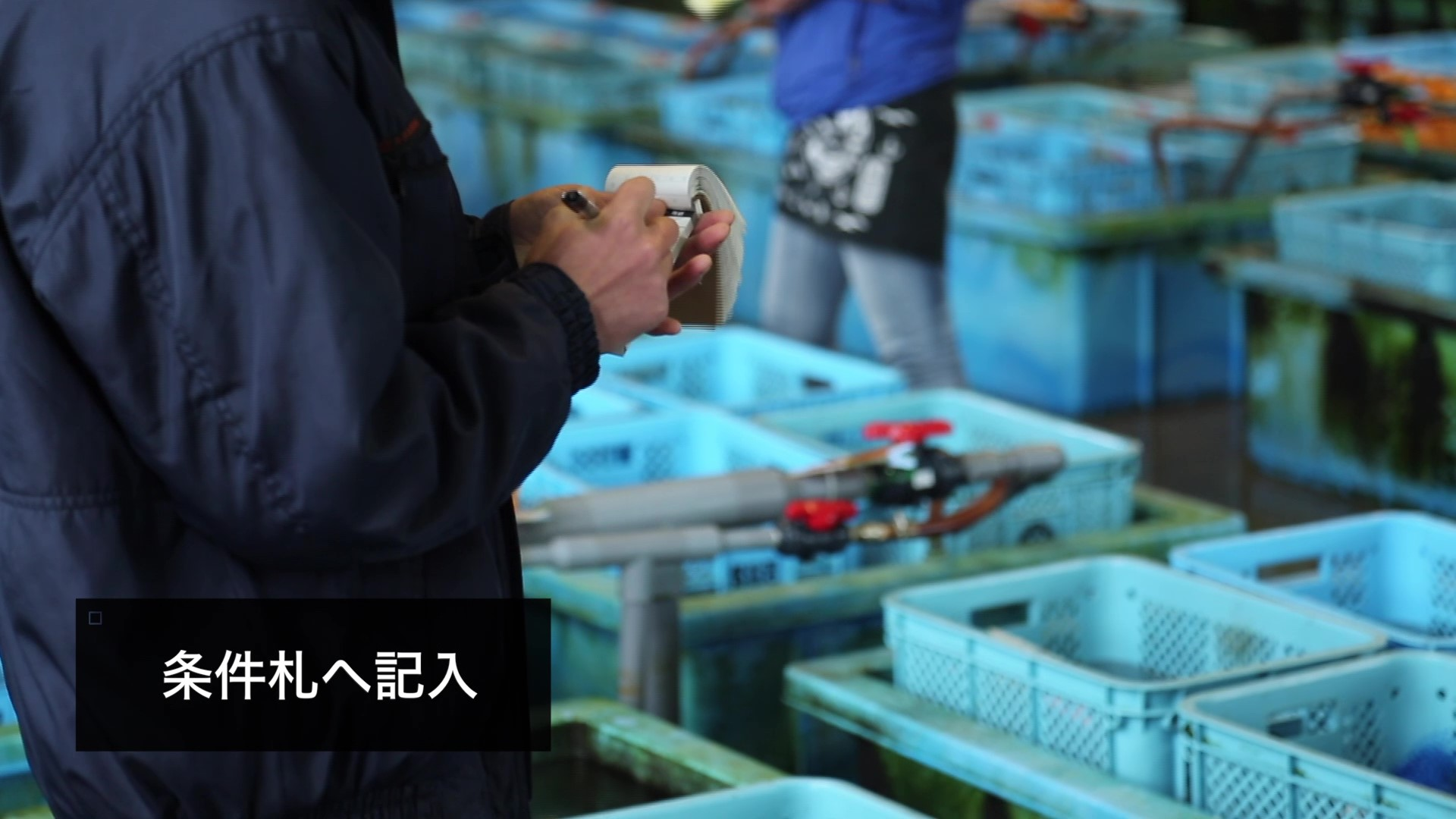 Picture of a man writing something in a small notebook surveying boxes of fish