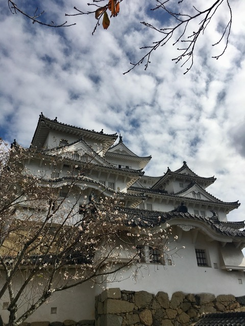 A picture of the Himeji castle