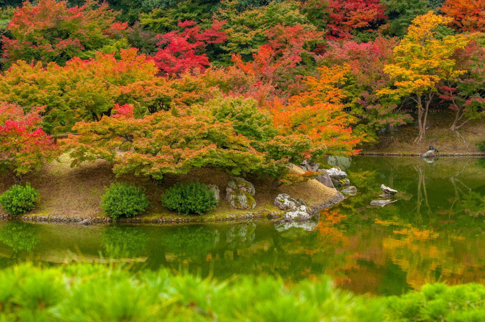 A picture of Ritsurin Garden during the day