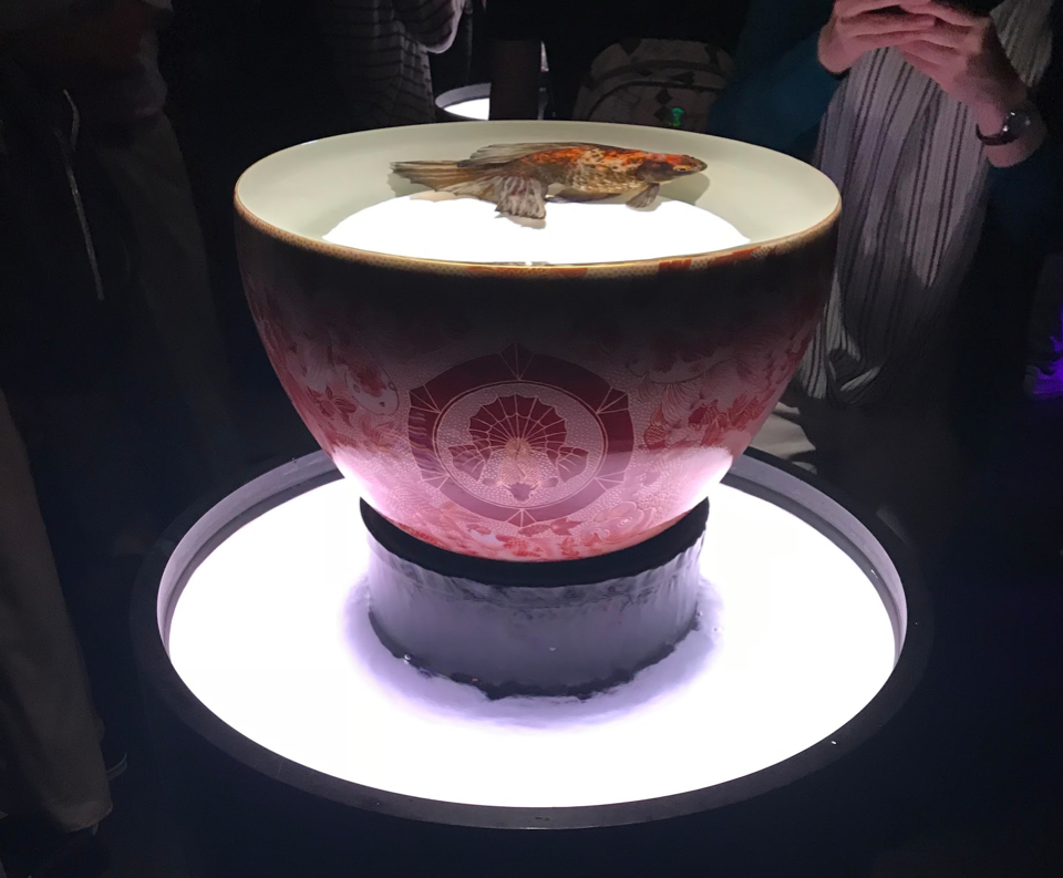 goldfish swimming in a large porcelain bowl