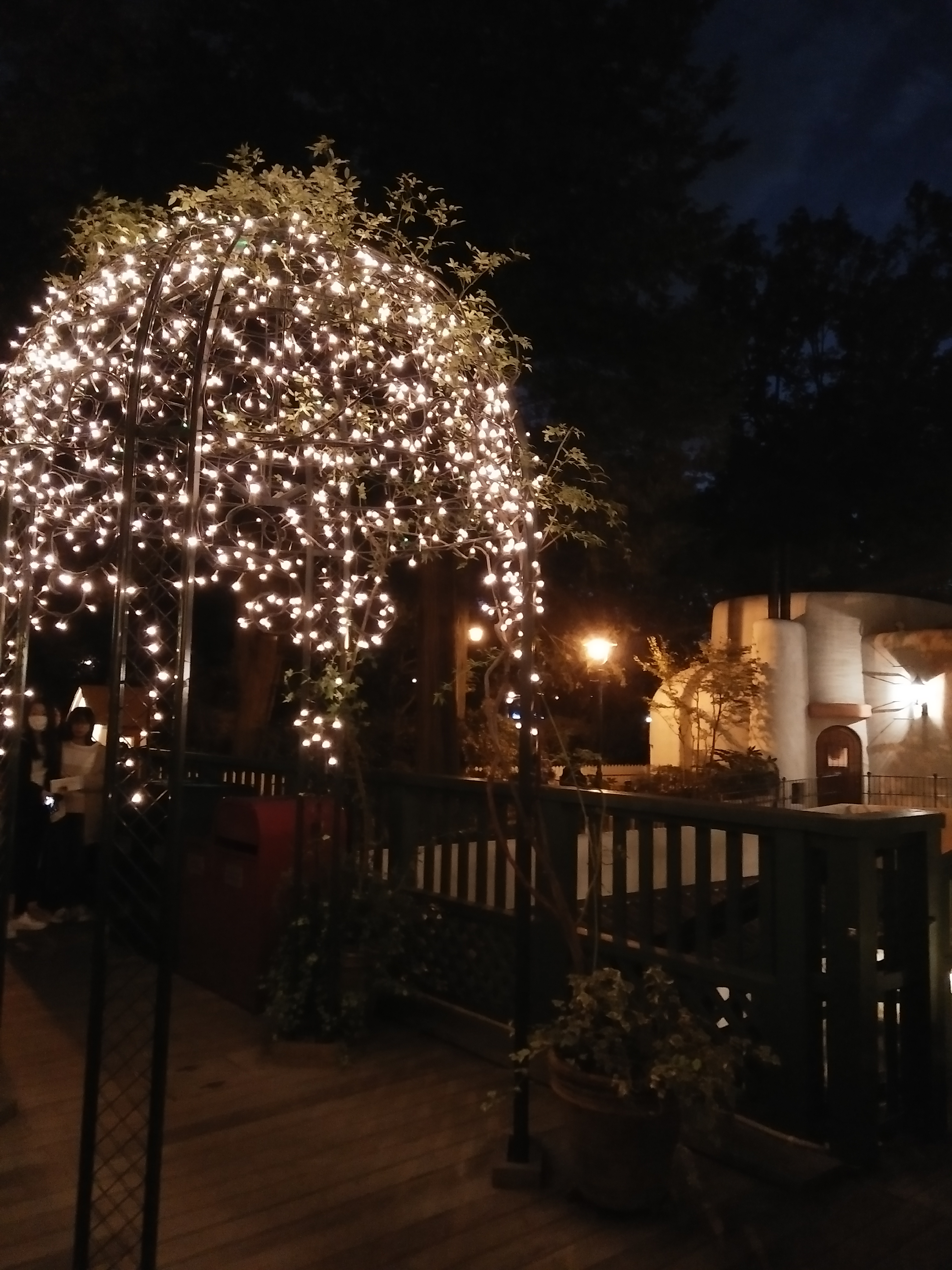 Picture of the museum grounds after dark