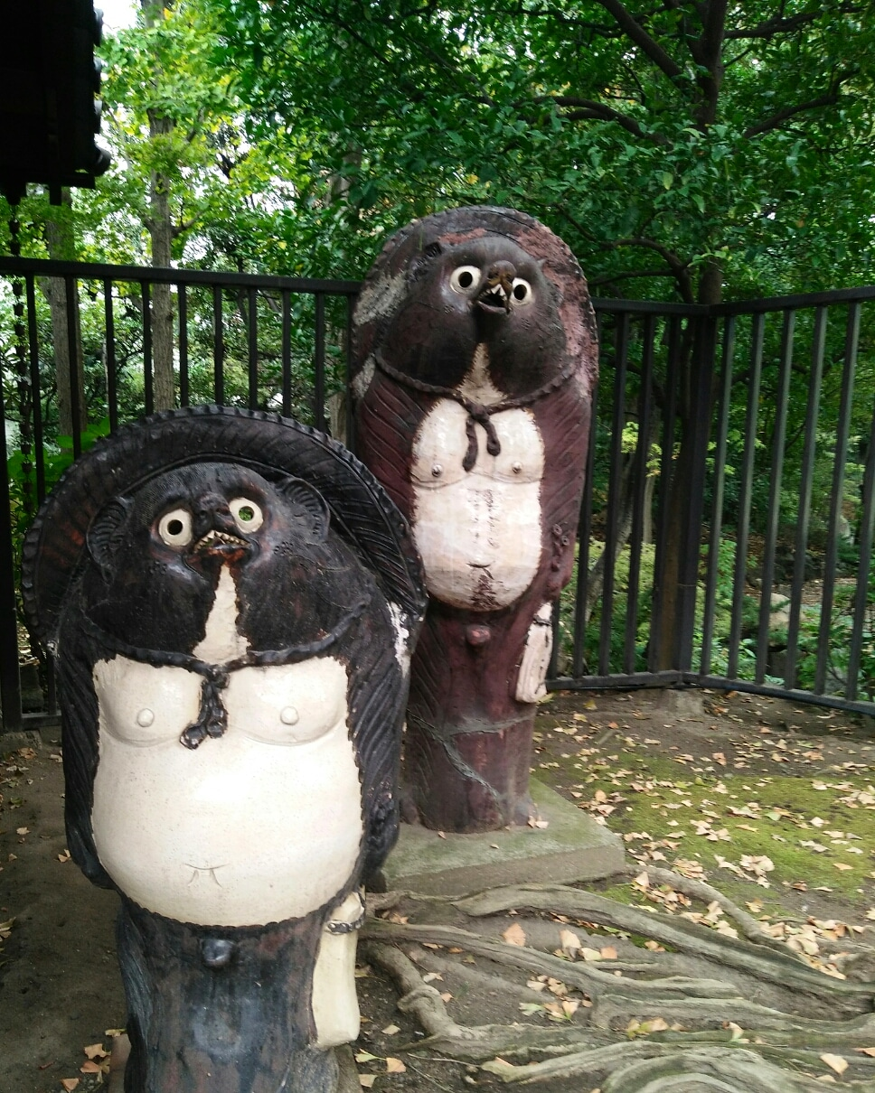 Picture of the raccoon dog statues