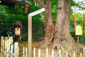The Asakusa (de)tour: Local myths, hidden shrines and street paintings