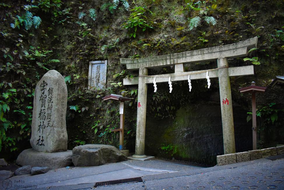 Zeniarai Benten Ugafuku Shrine, torii gate